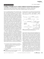 Grafting of Polyfluorene by Surface-Initiated Suzuki Polycondensation.