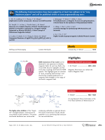 Graphical Abstract  Angew. Chem. Int. Ed. 262007