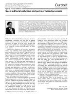 Guest editorial  polymers and polymer-based processes.