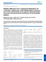 Highly efficient iron-catalyzed allylation of aromatic aldehydes with allyltriethoxysilane  one-pot and practical synthesis of homoallyl ethers.