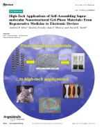 High-Tech Applications of Self-Assembling Supramolecular Nanostructured Gel-Phase Materials  From Regenerative Medicine to Electronic Devices.