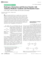 Hydrogen Abstraction and Electron Transfer with Aminoxyl Radicals  Synthetic and Mechanistic Issues.