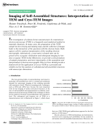 Imaging of Self-Assembled Structures  Interpretation of TEM and Cryo-TEM Images.