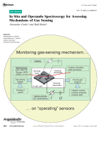 In Situ and Operando Spectroscopy for Assessing Mechanisms of Gas Sensing.