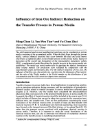Influence of Iron Ore Indirect Reduction on the Transfer Process in Porous Media.