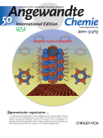 Inside Cover  Empty Helical Nanochannels with Adjustable Order from Low-Symmetry Macrocycles (Angew. Chem. Int. Ed. 132011)