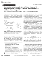 Intermediates in the Catalytic Cycle of Methyl CoenzymeM Reductase  Isotope Exchange is Consistent with Formation of a -AlkaneЦNickel Complex.