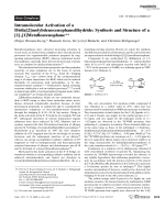 Intramolecular Activation of a Disila[2]molybdenocenophanedihydride  Synthesis and Structure of a [1] [1]Metalloarenophane.