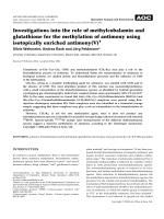 Investigations into the role of methylcobalamin and glutathione for the methylation of antimony using isotopically enriched antimony(V).