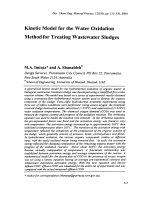 Kinetic Model for the Water Oxidation Method for Treating Wastewater Sludges.