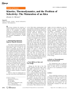 Kinetics  Thermodynamics  and the Problem of Selectivity  The Maturation of an Idea.