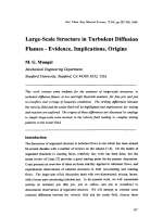 Large-Scale Structure in Turbulent Diffusion Flames - Evidence  Implications  Origins.