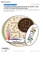 Long-Range Distance Measurements on Nucleic Acids in Cells by Pulsed EPR Spectroscopy.