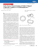 Lucky Seven  Characterization of Stable T-Shaped Copper(II) Complexes of [32]Heptaphyrins.