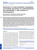 Mechanism of multi-metal(loid) methylation and hydride generation by methylcobalamin and cob(I)alamin  a side reaction of methanogenesis.