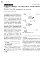 Mechanism of Multivalent CarbohydrateЦProtein Interactions Studied by EPR Spectroscopy.