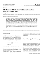 Mechanism of palladium-catalyzed reactions  role of chloride ions.