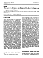 Mercury resistance and detoxification in bacteria.