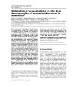 Metabolites of arsenobetaine in rats  does decomposition of arsenobetaine occur in mammals.