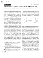 Methylgallium as a Terminal Ligand in [(Cp.200705031.pdfGa)4Rh(GaCH3)]+