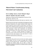 Mineral Matter Transformation During Pulverized Coal Combustion.