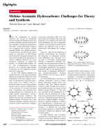 Mnbius Aromatic Hydrocarbons  Challenges for Theory and Synthesis.