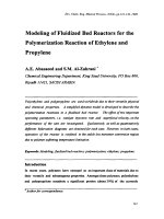 Modeling of Fluidized Bed Reactors for the Polymerization Reaction of Ethylene and Propylene.