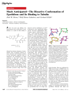 Much AnticipatedЧThe Bioactive Conformation of Epothilone and Its Binding to Tubulin.