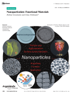 Nanoparticulate Functional Materials.