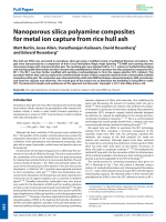 Nanoporous silica polyamine composites for metal ion capture from rice hull ash.