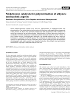 Nickelocene catalysts for polymerization of alkynes  mechanistic aspects.