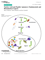 Nucleic Acid and Peptide Aptamers  Fundamentals and Bioanalytical Aspects.