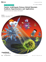 Nucleic AcidOrganic Polymer Hybrid Materials  Synthesis  Superstructures  and Applications.