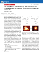 One Step Closer to Isomerically Pure Fullerenes and Heterofullerenes  Harnessing the Potential of Catalytic Surfaces.
