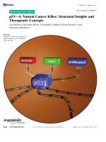 p53ЧA Natural Cancer Killer  Structural Insights and Therapeutic Concepts.