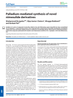 Palladium-mediated synthesis of novel nimesulide derivatives.