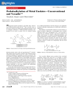 Perhaloalkylation of Metal EnolatesЧUnconventional and Versatile.