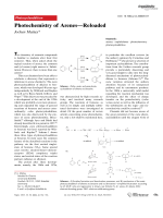 Photochemistry of ArenesЧReloaded.