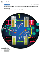 Photoswitchable Nanoassemblies by Electrostatic Self-Assembly.