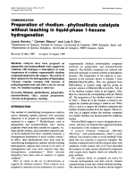 Preparation of rhodiumЦphyllosilicate catalysts without leaching in liquid-phase 1-hexene hydrogenation.