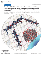 Rapid and Efficient Identification of Bacteria Using Gold-NanoparticleЦPoly(para-phenyleneethynylene) Constructs.