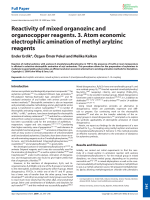 Reactivity of mixed organozinc and organocopper reagents. 3. Atom economic electrophilic amination of methyl arylzinc reagents