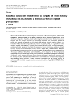 Review  Reactive selenium metabolites as targets of toxic metalsmetalloids in mammals  a molecular toxicological perspective.