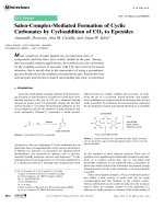 Salen-Complex-Mediated Formation of Cyclic Carbonates by Cycloaddition of CO2 to Epoxides.