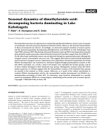 Seasonal dynamics of dimethylarsinic-acid-decomposing bacteria dominating in Lake Kahokugata.