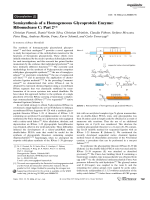 Semisynthesis of a Homogeneous Glycoprotein Enzyme  RibonucleaseC  Part2.