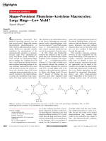 Shape-Persistent Phenylene-Acetylene Macrocycles  Large RingsЧLow Yield.