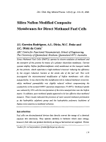 Silica Nafion Modified Composite Membranes for Direct Methanol Fuel Cells.