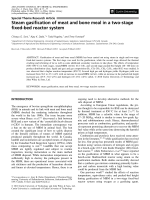 Steam gasification of meat and bone meal in a two-stage fixed-bed reactor system.