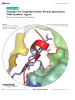 Strategies for Targeting ProteinЦProtein Interactions With Synthetic Agents.